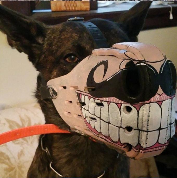 Focinheiras_customizadas_para_cães (10)