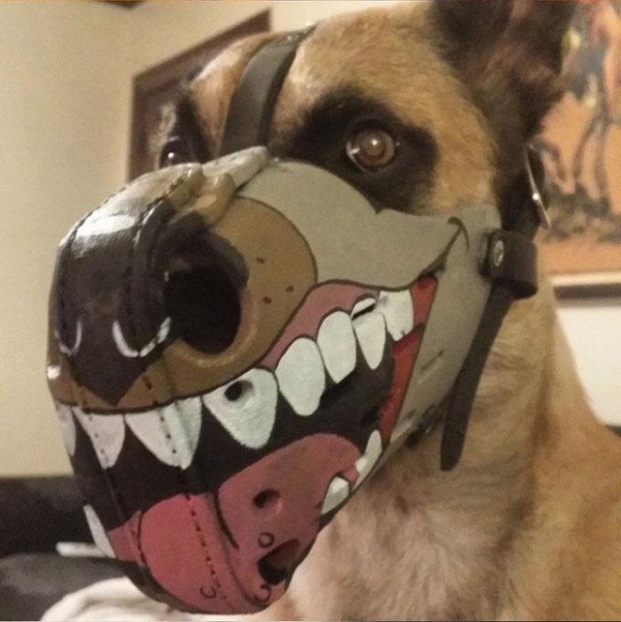 Focinheiras_customizadas_para_cães (12)