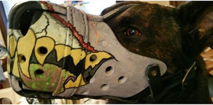 Focinheiras_customizadas_para_cães (14)