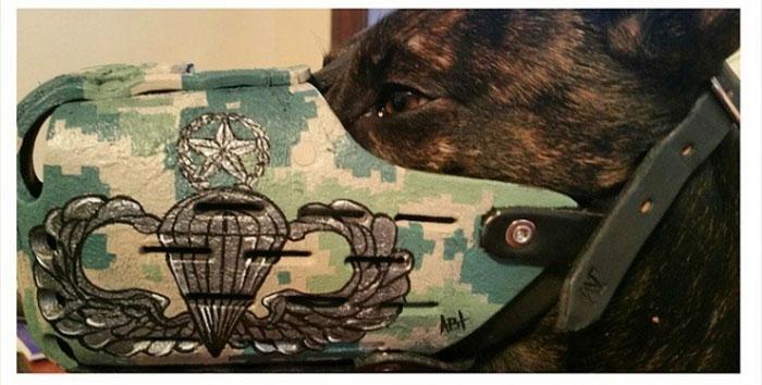 Focinheiras_customizadas_para_cães (17)