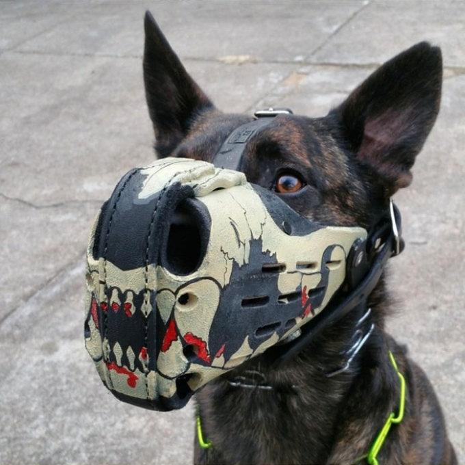 Focinheiras_customizadas_para_cães (3)