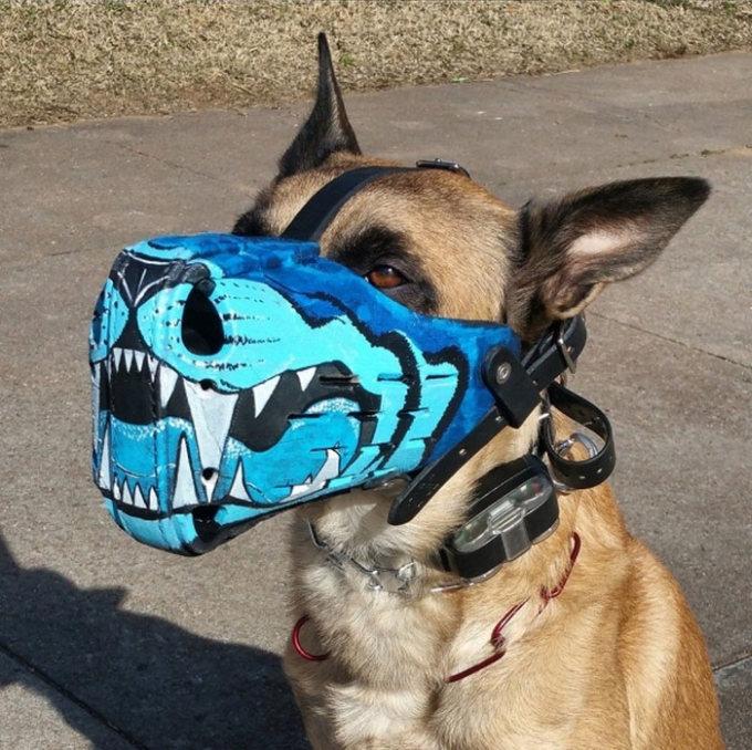 Focinheiras_customizadas_para_cães (4)