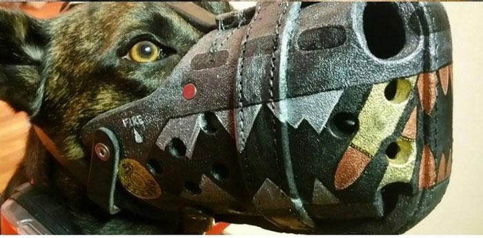 Focinheiras_customizadas_para_cães (5)