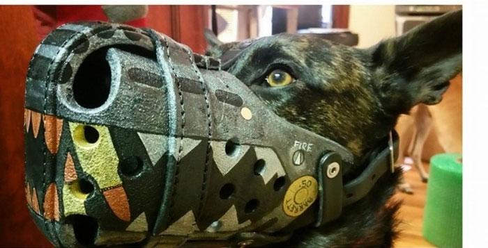 Focinheiras_customizadas_para_cães (6)