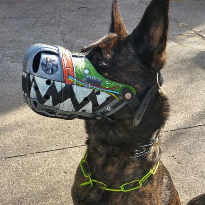 Focinheiras_customizadas_para_cães (7)