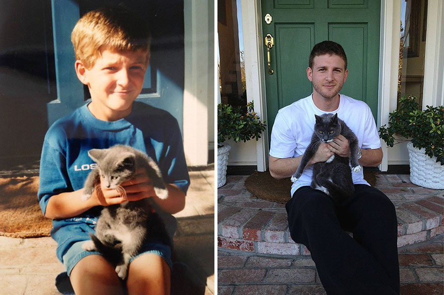 Fotos antes e depois de gatos crescendo (7)