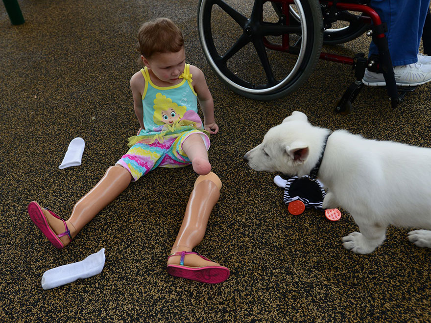 Menina-de-3-anos-que-não-tem-os-pés-ganha-filhote-que-também-não-tem-uma-patinha (3)