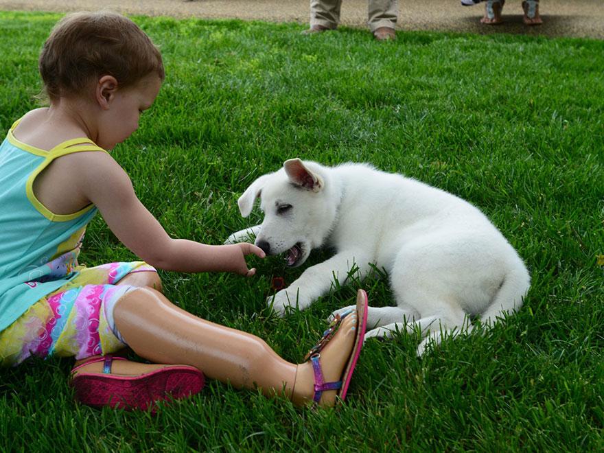 Menina-de-3-anos-que-não-tem-os-pés-ganha-filhote-que-também-não-tem-uma-patinha (6)