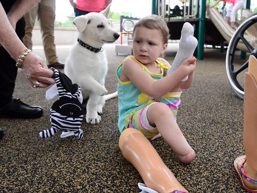 Menina-de-3-anos-que-não-tem-os-pés-ganha-filhote-que-também-não-tem-uma-patinha (7)