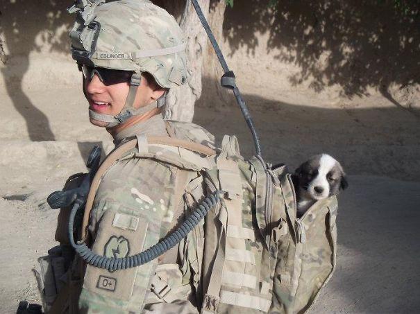 Soldados-e-animais-que-se-tornaram-melhore-amigos (3)