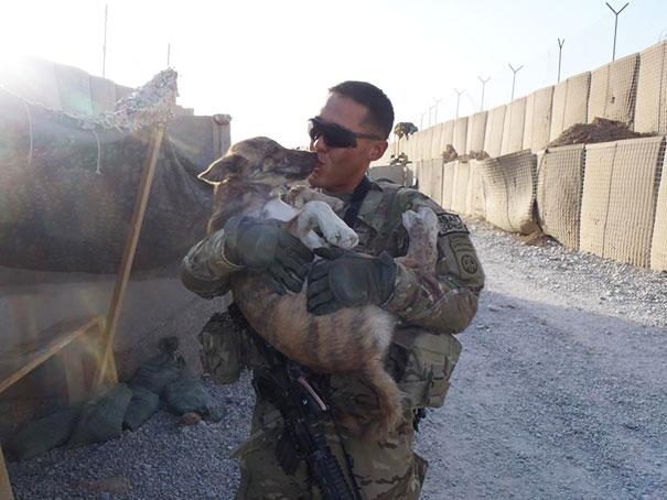 Soldados e animais que se tornaram melhores amigos no meio da guerra