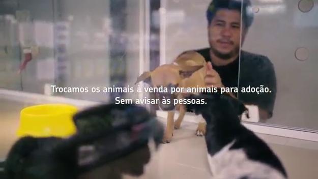 ONG troca animais a venda por animais para adoção em petshops