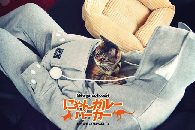 Casaco com bolso especial para carregar gatos