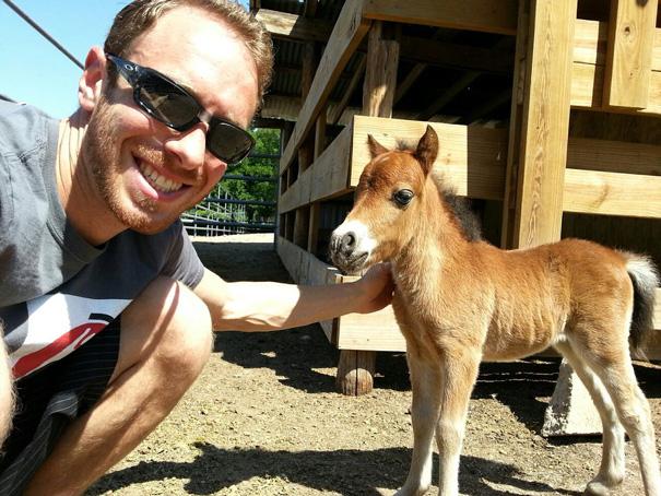 Esses mini cavalos são as criaturas mais fofas do mundo (8)