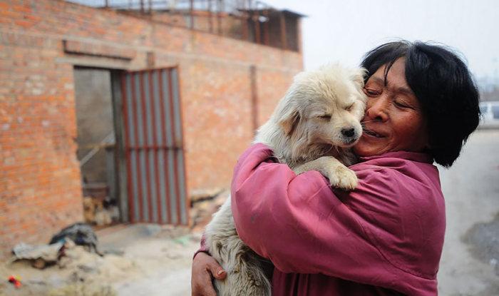 Chinesa viaja 2.500 km para salvar cães de festival de carne de cachorro (14)