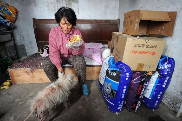 Chinesa viaja 2.500 km para salvar cães de festival de carne de cachorro (5)