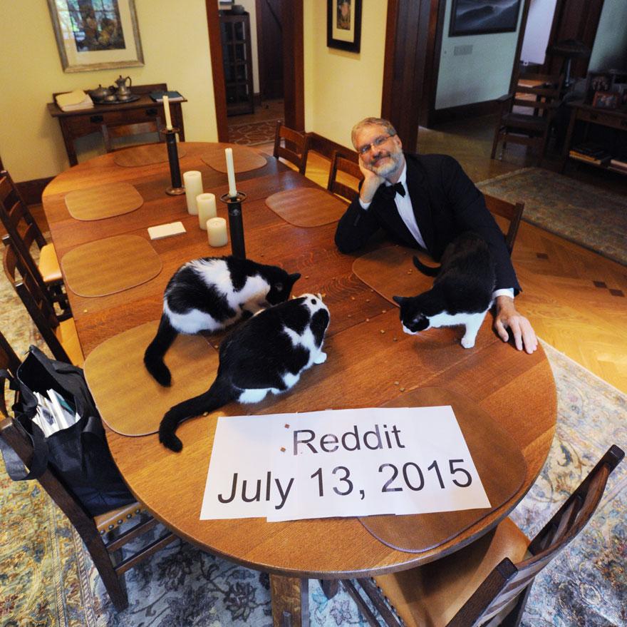 Quando sua esposa sai de férias, este homem tem jantares secretos com gatos (2)