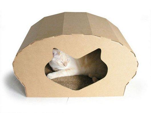 16 ideias criativas de casinhas de papelão para gatos