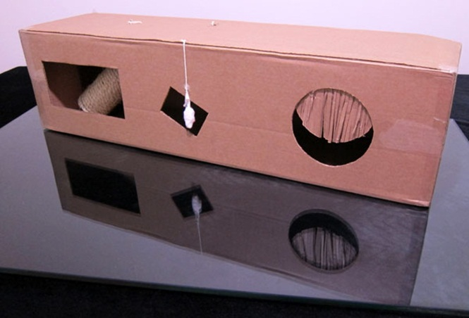 ideias-criativas-de-casinhas-de-papelão-para-gatos (10)