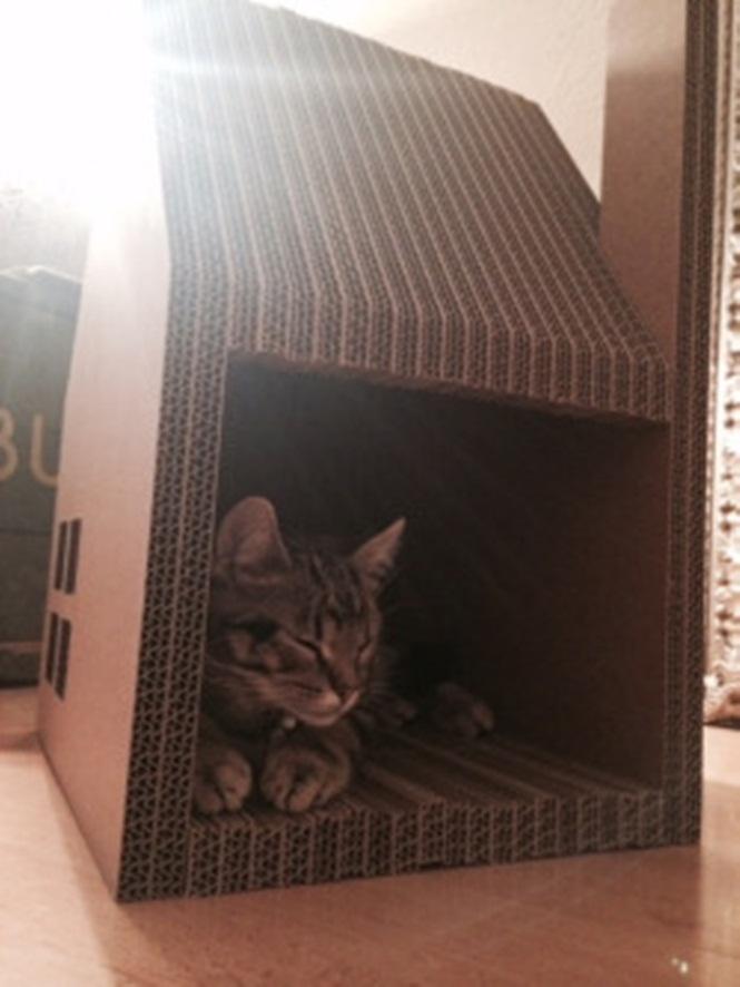 ideias-criativas-de-casinhas-de-papelão-para-gatos (2)