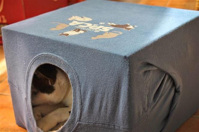 ideias-criativas-de-casinhas-de-papelão-para-gatos (6)