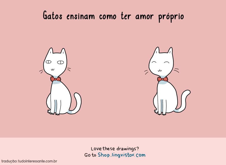 vantagens-de-se-ter-um-gato-em-casa (10)