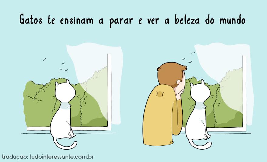 vantagens-de-se-ter-um-gato-em-casa (8)