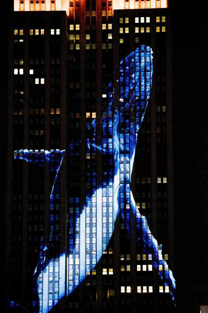 Leão Cecil é projetado no Empire State Building (12)