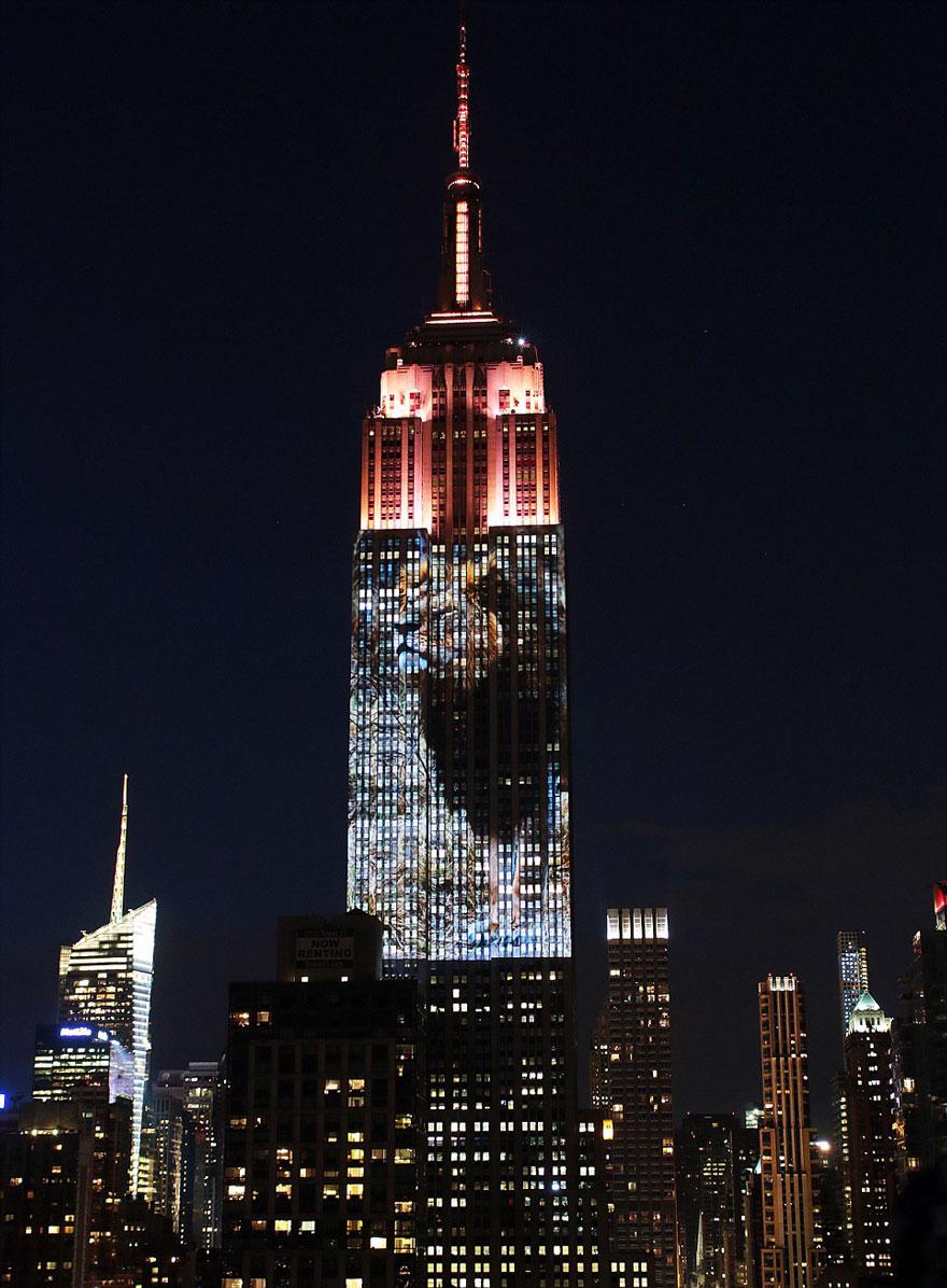 Leão Cecil é projetado no Empire State Building