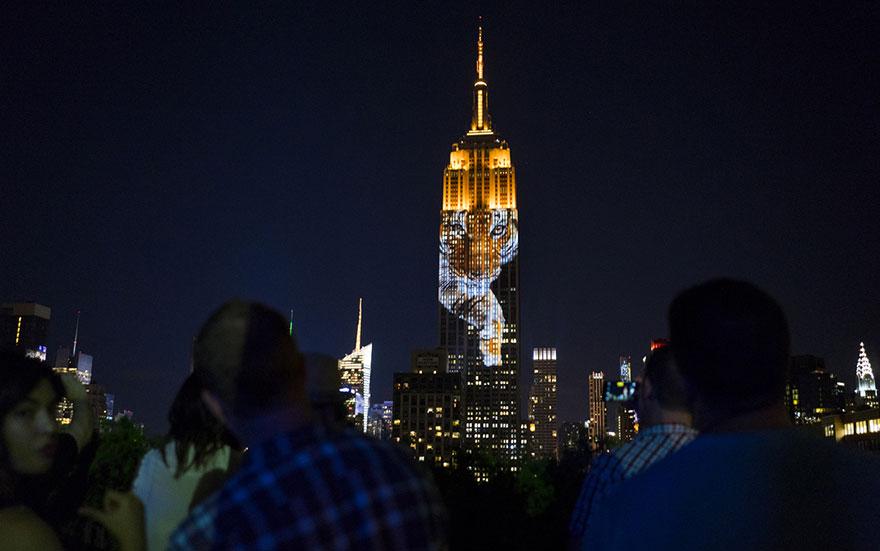 Leão Cecil é projetado no Empire State Building (5)