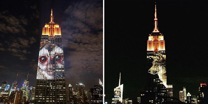 Leão Cecil é projetado no Empire State Building (6)