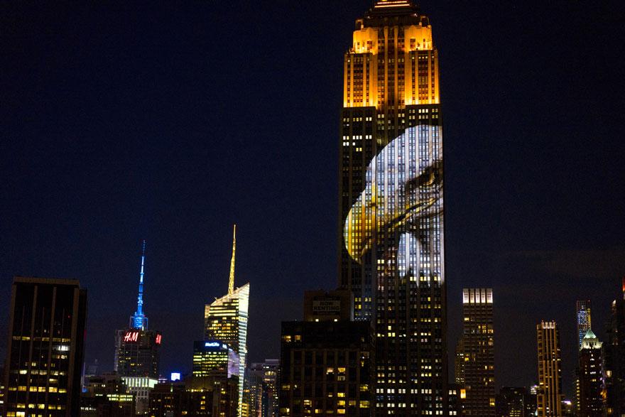 Leão Cecil é projetado no Empire State Building (7)