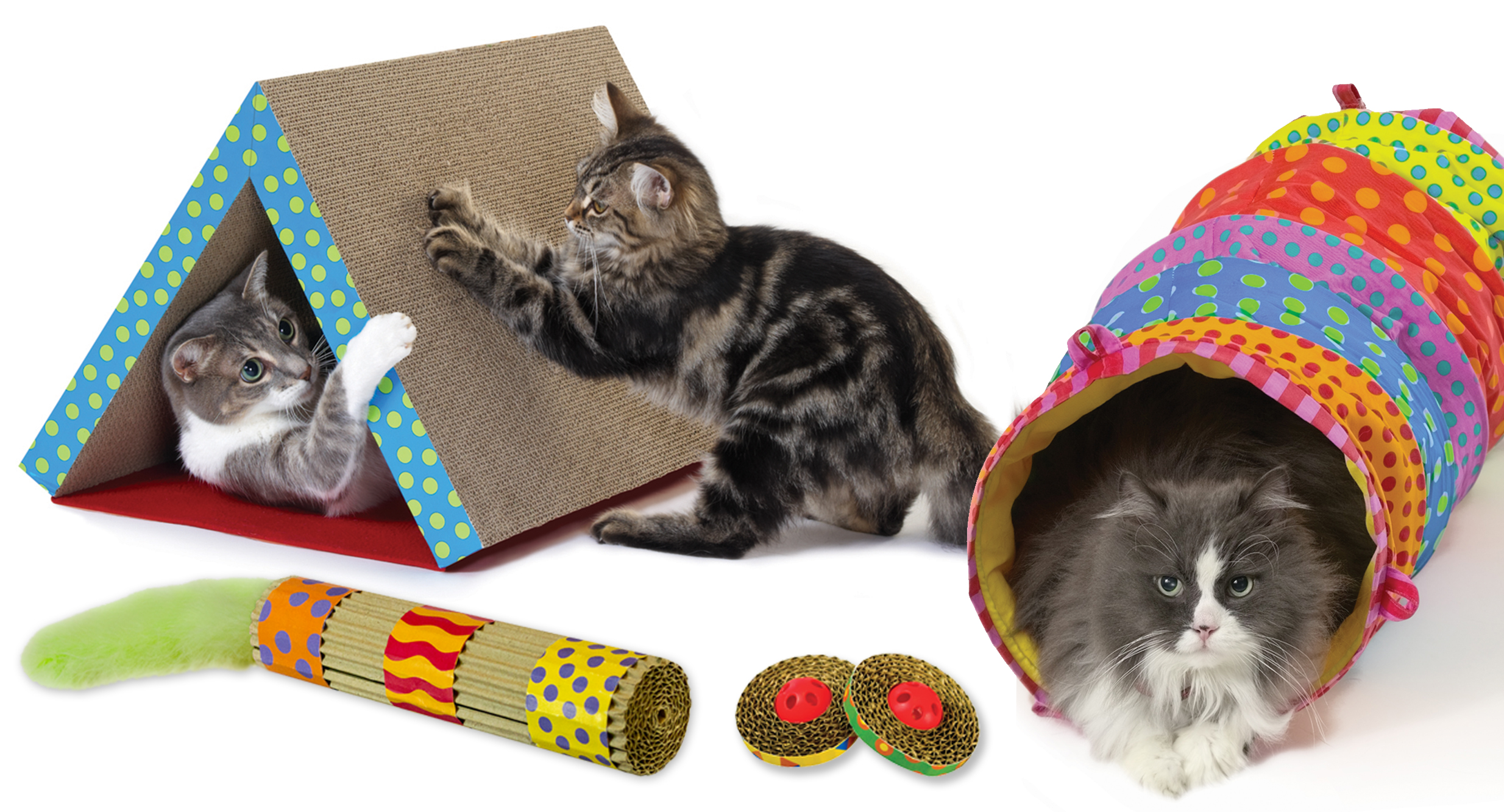Escolhendo os acessórios perfeitos para seu PET (3)