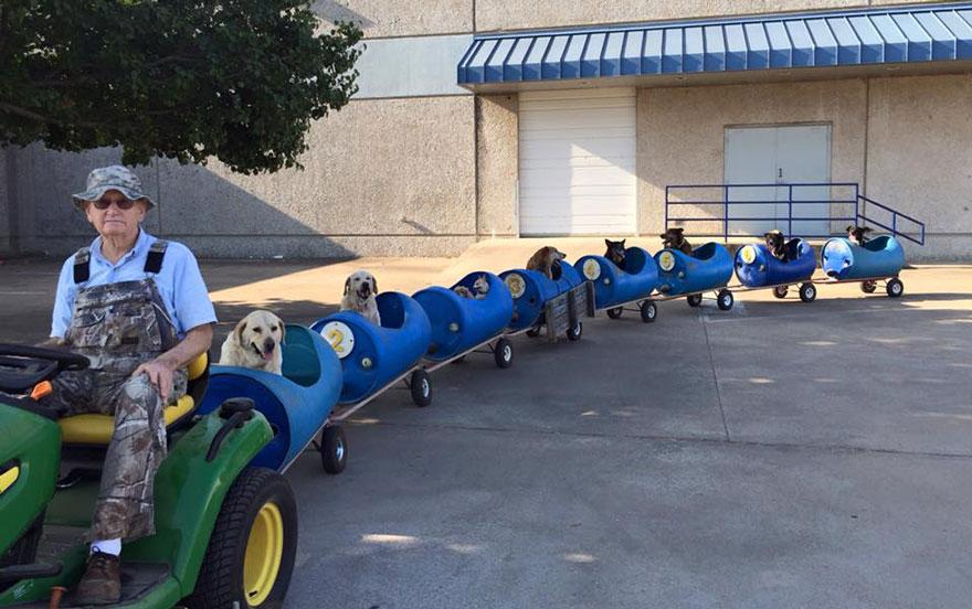 Homem de 80 anos constrói um trem para se aventurar com vira-latas resgatados (3)