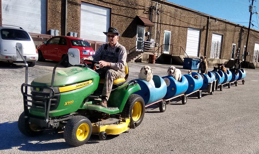 Homem de 80 anos constrói um trem para se aventurar com vira-latas resgatados