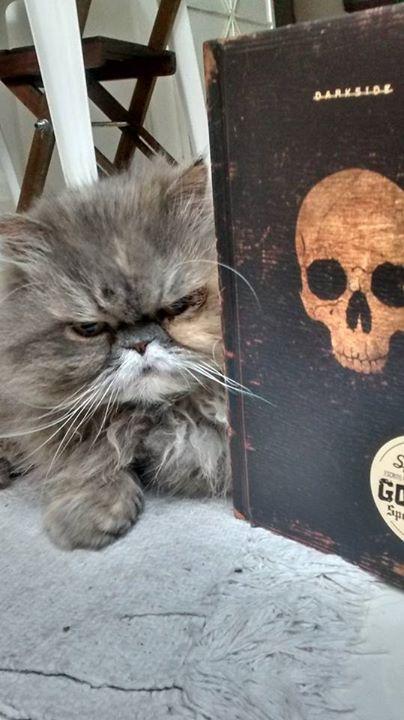 Amantes-de-livros-e-animais (48)