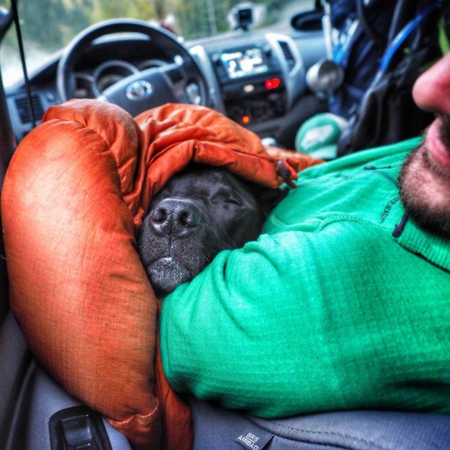 Rapaz vive em um caminhão e viaja com seu cachorro pelos Estados unidos (12)