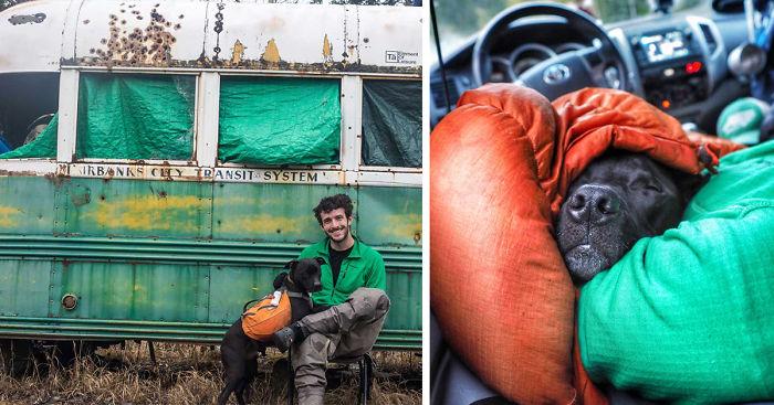 Rapaz vive em um caminhão e viaja com seu cachorro pelos Estados unidos (18)