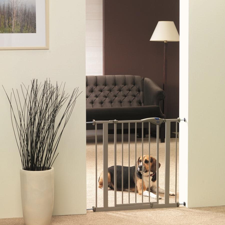 Como-preparar-sua-casa-para-seu-novo-animal-de-estimação (33)