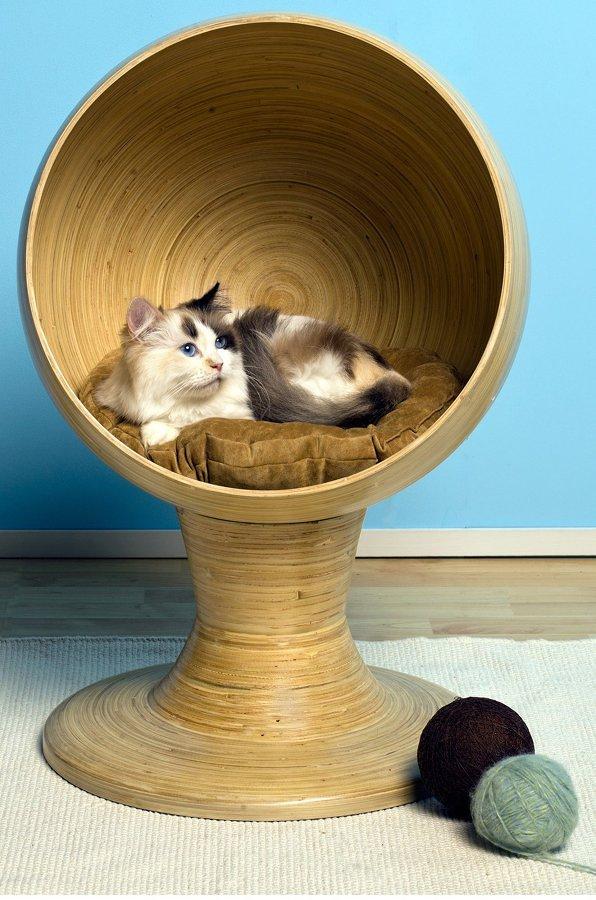 Como-preparar-sua-casa-para-seu-novo-animal-de-estimação (8)