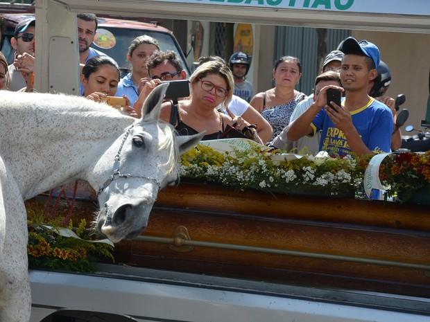cavalo-comove-familia-de-vaqueiro-morto-ao-se-despedir-do-dono