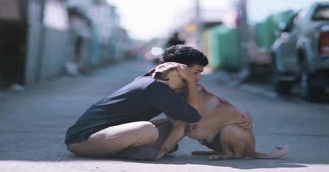 Este vídeo de cães de rua recebendo o primeiro abraço é realmente emocionante